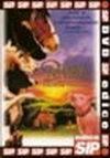 Babe - Galantní prasátko - DVD