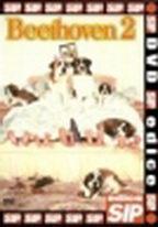 Beethoven 2 - DVD