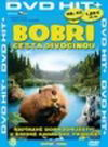 Bobři-cesta divočinou - DVD