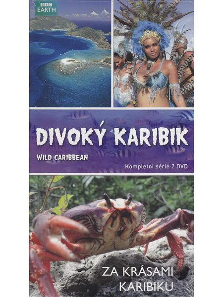 Divoký Karibik - DVD