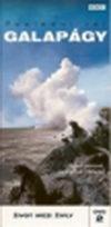 Galapágy - poslední ráj 2 - Život mezi živly - DVD