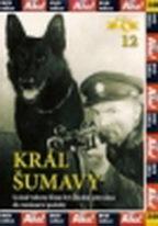 Král Šumavy - DVD
