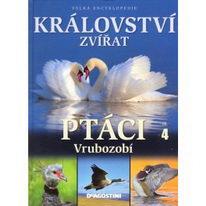 Království zvířat - Ptáci - díl 4 - vrubozobí
