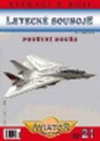 Letecké souboje 21 - Pouštní bouře - DVD