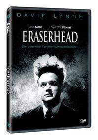 Mazací hlava DVD