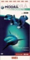 Modrá planeta 1 - DVD