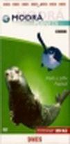 Modrá planeta 4 - DVD