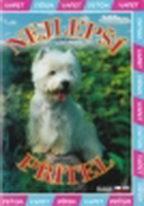 Nejlepší přítel - DVD