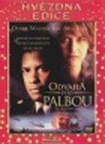 Odvaha pod palbou - DVD