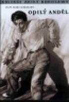 Opilý anděl - DVD