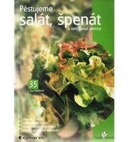 Pěstujeme salát, špenát a další listové zeleniny