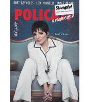 Policajt k pronajmutí - DVD