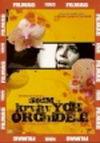 Sedm krvavých orchidejí - DVD