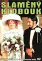 Slaměný klobouk - DVD