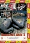 Šokující Asie 2 - DVD