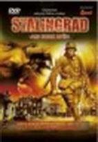 Stalingrad - Ani krok zpět - DVD