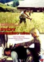 Stíny horkého léta ( plast ) DVD