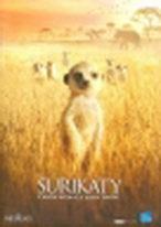Surikaty - DVD