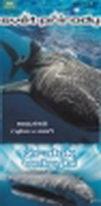 Svět přírody - DVD 2 - Žralok velrybí ( pošetka ) DVD
