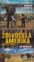 Zdivočelá Amerika - DVD