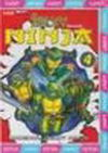 Želvy ninja 4 - VAPET - DVD