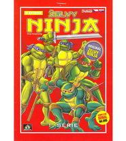 Želvy ninja - VAPET 1. série - DVD