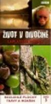 Život v divočině 3 - Laplatská nížina - DVD
