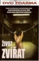 Život zvířat - DVD