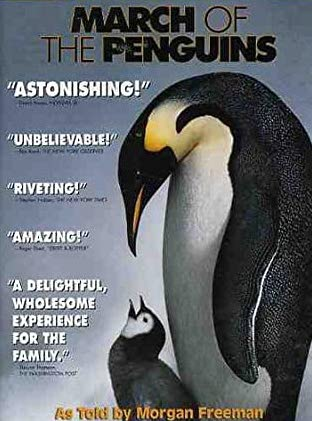 March of the Penguins - DVD /plast/