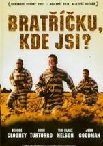 Bratříčku, kde jsi? - DVD /plast/