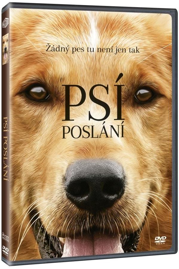 Psí poslání - DVD /plast/
