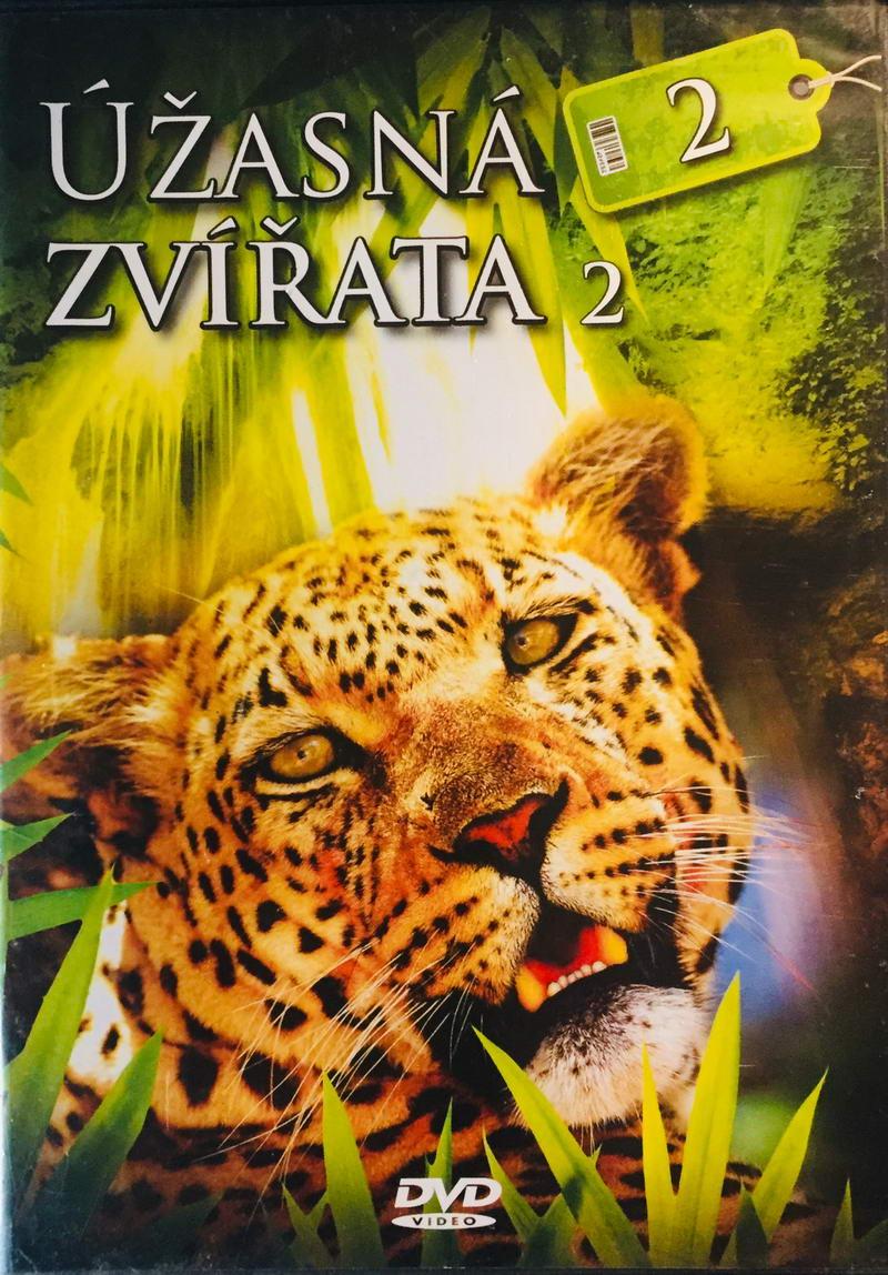 Úžasná zvířata 2 - Divoké kočky - DVD /plast/