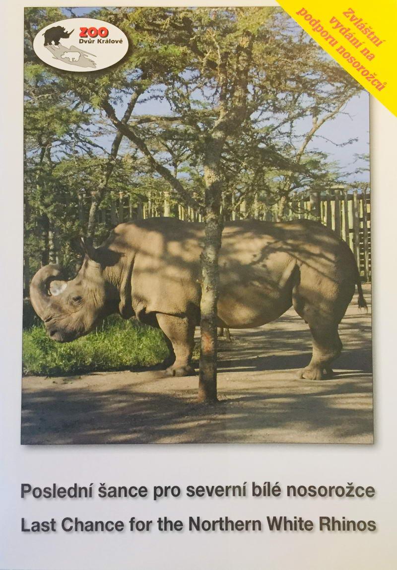 Poslední šance pro severní bílé nosorožce - DVD /plast/