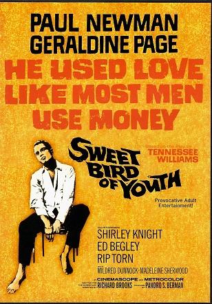 Sweet Bird of Youth / Sladký pták mládí ( originální znění, BEZ CZ titulků ) plast DVD