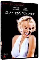 Slaměný vdovec - DVD plast