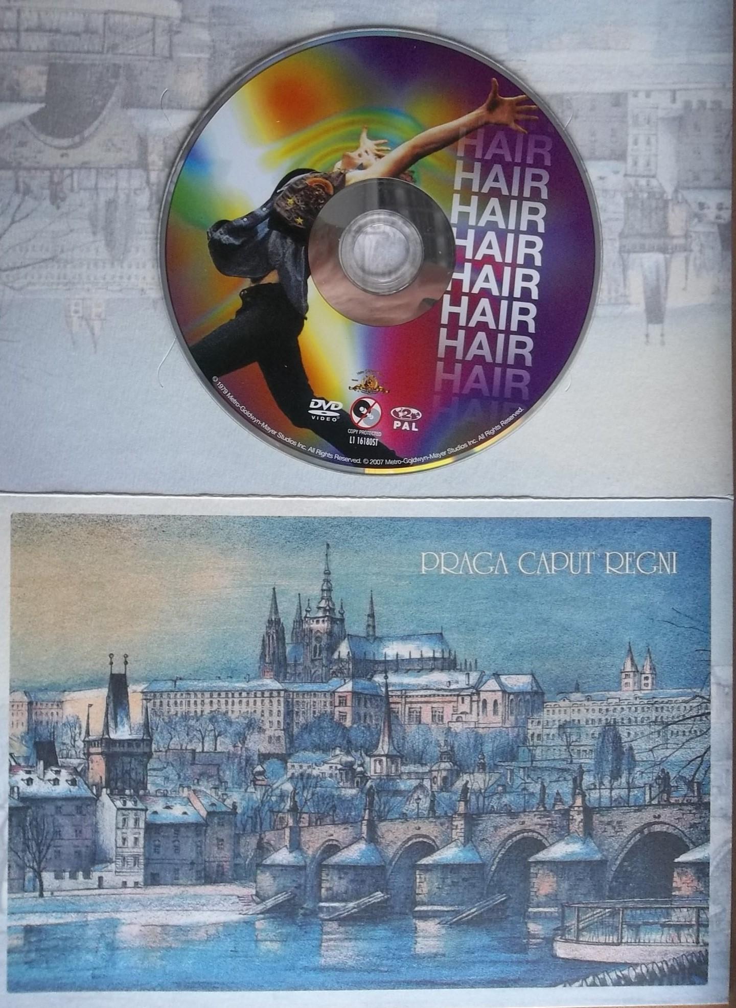 Hair / Vlasy (dárková obálka) - DVD