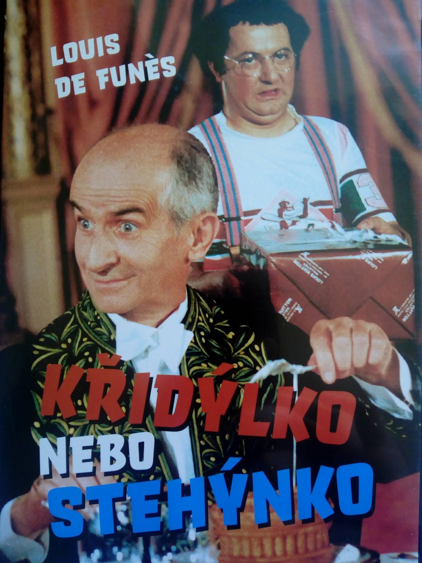 Křidýlko nebo stehýnko ( slim/plast ) - DVD