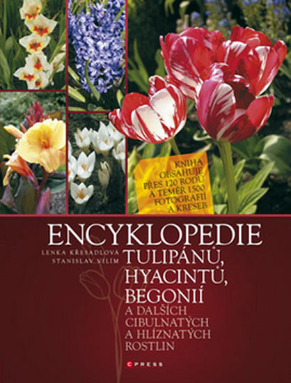 Encyklopedie tulipánů, hyacintů, begonií a dalších  cibulnatých a hlíznatých ros