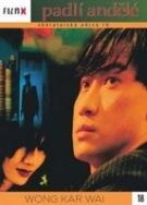 Padlí andělé ( digipack ) - DVD