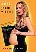 Šéfe, jsem v tom!  - DVD - digipack