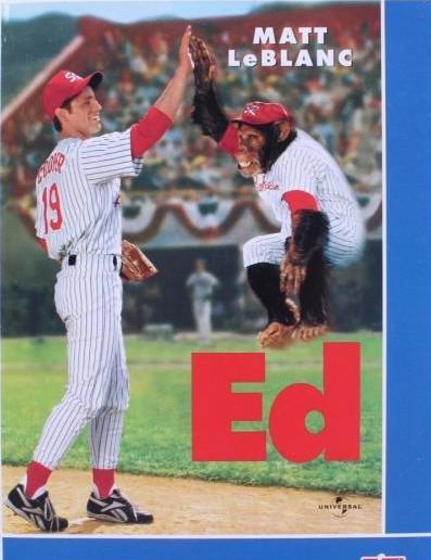 ED DVD pošetka
