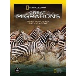 Velké migrace 1 - DVD plast