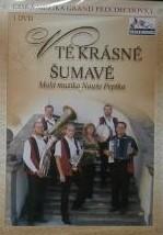 V té krásné Šumavě DVD plast