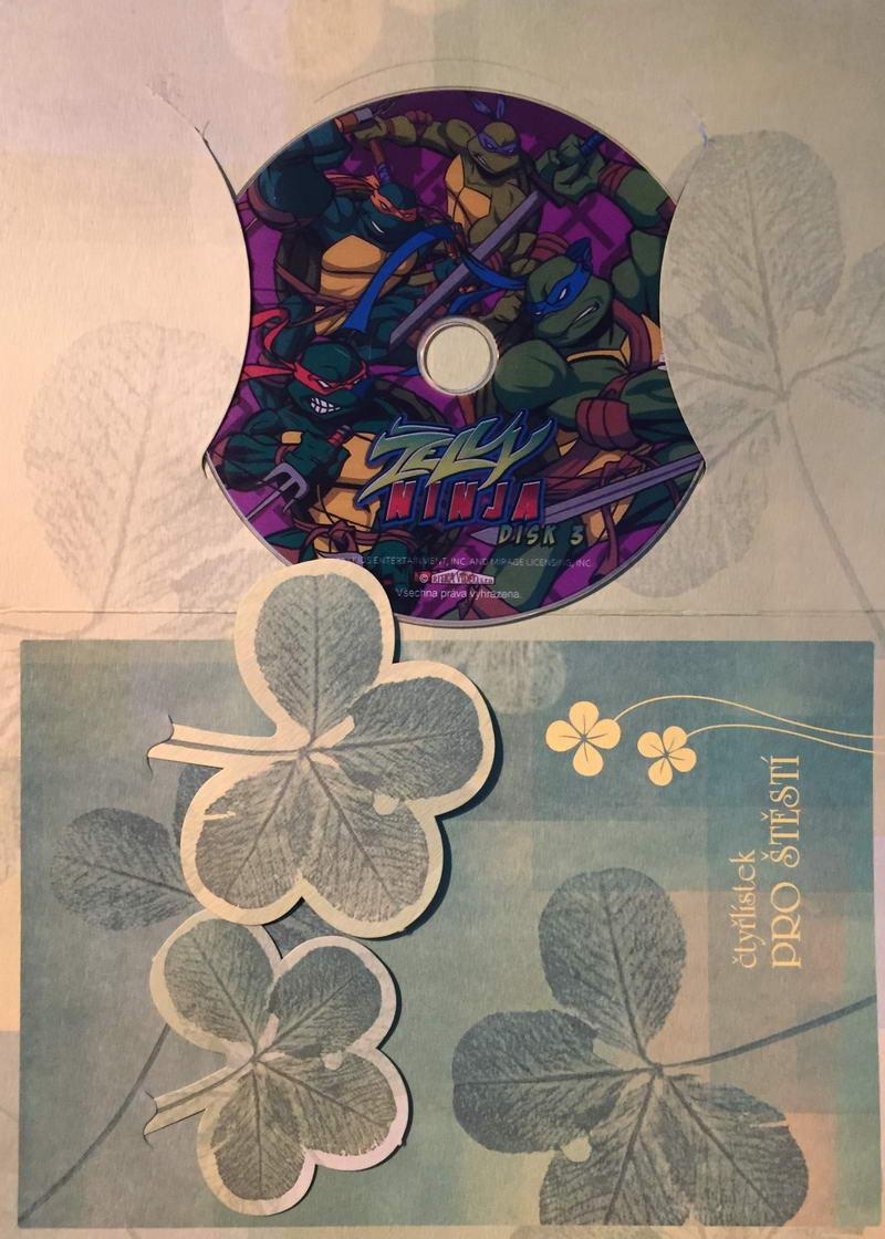 Želvy Ninja 3 - DVD /dárkový obal/