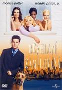 Bezhlavě zamilovaná - DVD plast