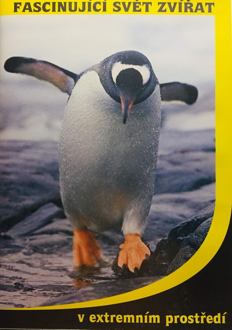 Fascinující svět zvířat - v extrémním prostředí - DVD /plast/