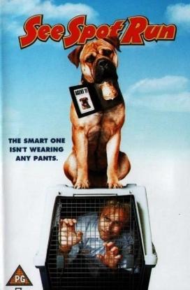 See Spot Run - DVD /plast/