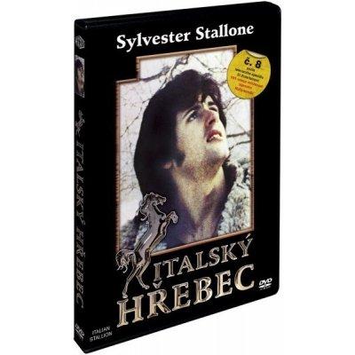 Italský hřebec - DVD /plast/
