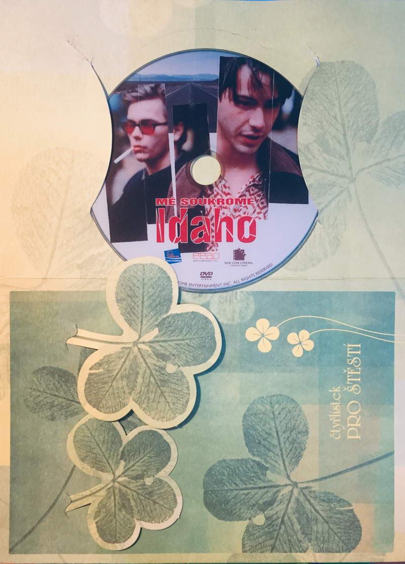 Mé soukromé Idaho - DVD /dárkový obal/
