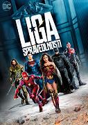 Liga spravedlnosti - DVD plast